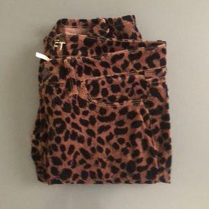 Ann Taylor Loft Velvet Cheetah Pants